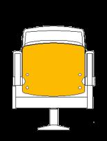 seient groc